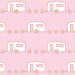 retro icons  caravan peach skin and icy pole white on pink floss