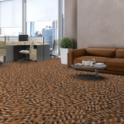 pod concept carpet and upholstery