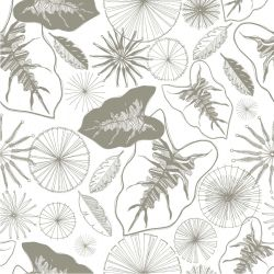 bushland blooms fan palm firewheel outline grey