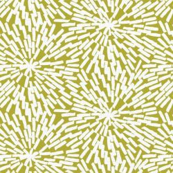 oriental collective  basket weave citron