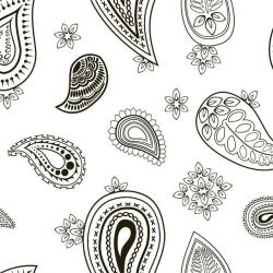 back to basics paisley black and white
