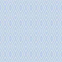 curatedmemory tribal picnic cloudy blue