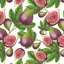 fruit veg fig leaf