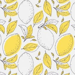 fruit veg lemon leaf sketch