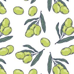 fruit veg olive drawings white