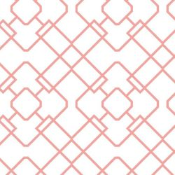 lattice N detail
