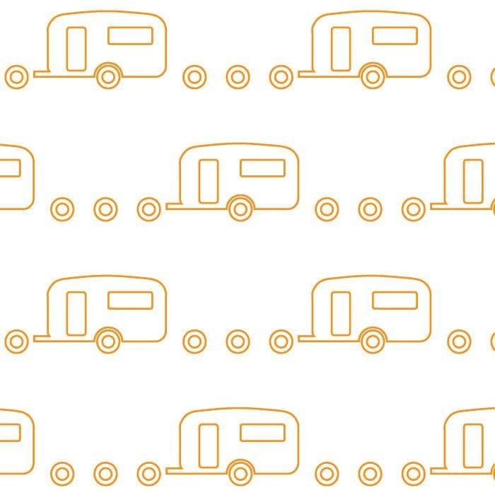 retro icons  caravan mandarin on icy pole white
