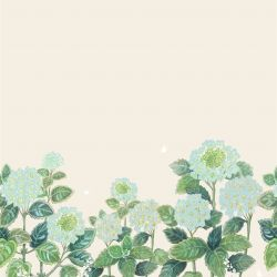 secret garden hydrangea border blue cream