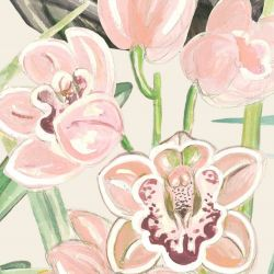 secret garden orchid allover pink cream
