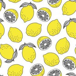 fruit veg market lemon drawing