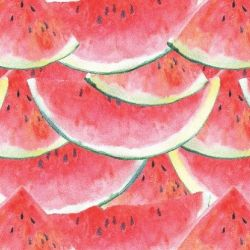 fruit veg market watermelon watercolour