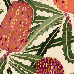 australian botanical banksia tangle natural detail