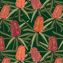 australian botanical banksia tangle bottlegreen
