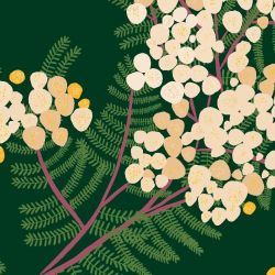 australian botanical wattle cream bottlegreen detail