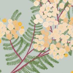 australian botanical wattle cream on mint detail