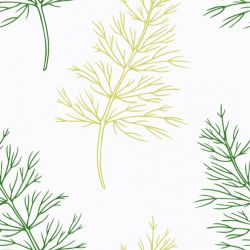fruit veg dill outline