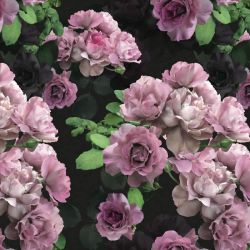 floral opulence wild roses