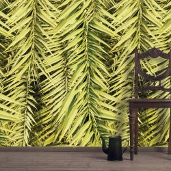 green walls sunbleached palm